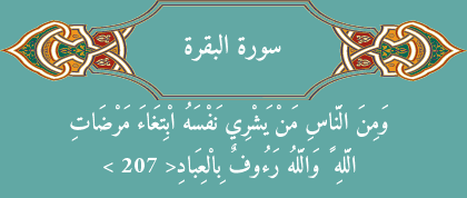 Surat Al-Baqarah Ayat 207