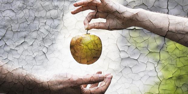 Makna Tersirat dari Pelanggaran Nabi Adam dan Hawa Makan Buah Khuldi di Surga